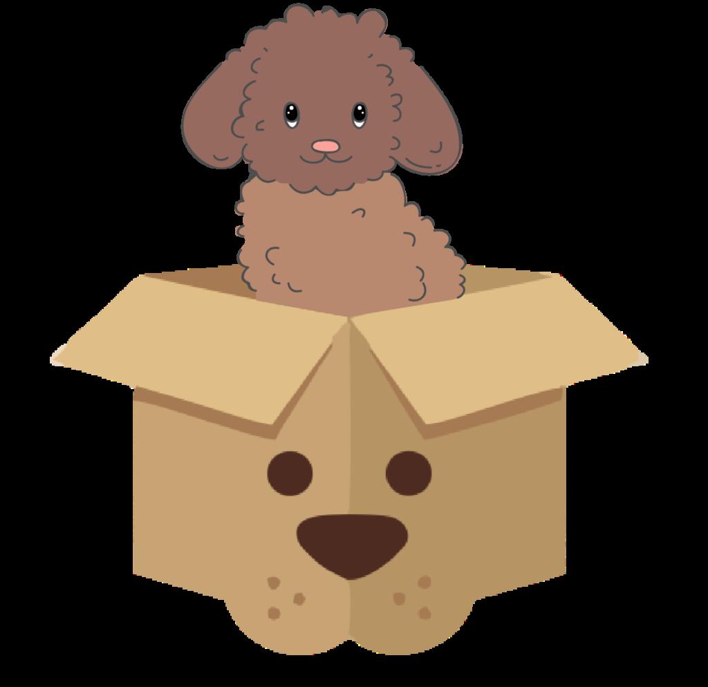 baf box so psíkom